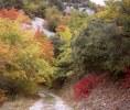 Herbstbeginn in Frankreich- Cedon