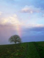 Der erste Regenbogen im Jahr 2011