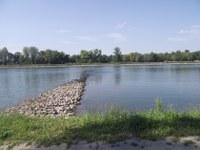 Rheinufer; Blick ins Elsass