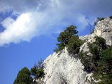 Felsen-04-Ardèche_227x170